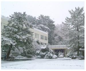 雪の旧1号館(平成16年3月5日)
