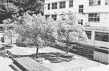 昭和55年 久徴庭園完成(プール跡)